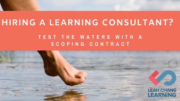 Test the waters with elearning consultant